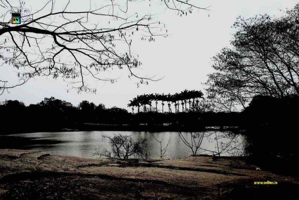 A romantic evening - bengaluru lalbagh lake - sanjib nath - sn films